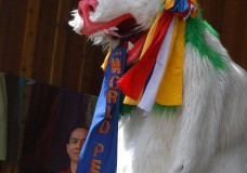 The Snow Lion of the Drepung Monks greeted the crowd June 23 at the Telluride Bluegrass Festival. (Photo by Hans Lehndorff)