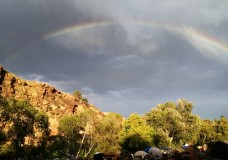 Golden moments under the rainbow at RockyGrass 2014